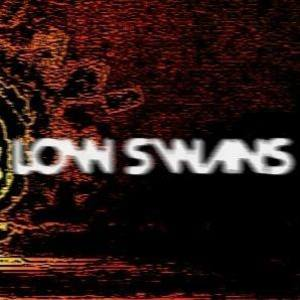 Low Swans