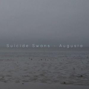 Suicide Swans