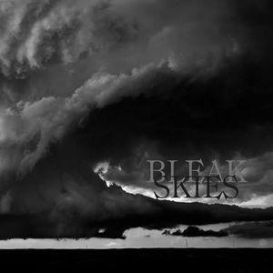 Bleak Skies