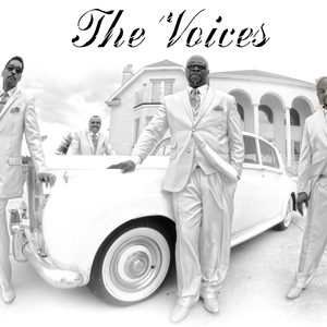 THE VOICES FAN PAGE