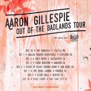 Aaron Gillespie