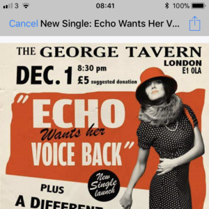 Echo Wants Her Voice Back