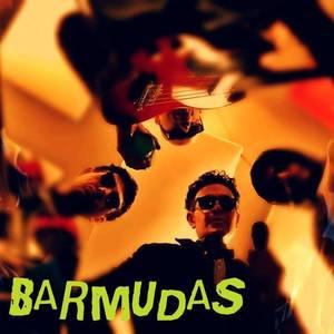 Barmudas