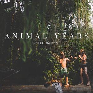 Animal Years