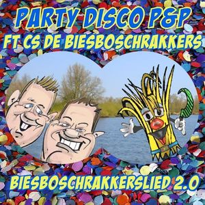 Party Disco P&P