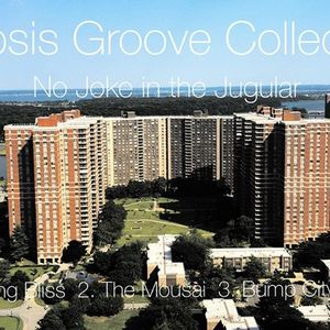 Ellipsis Groove Collective