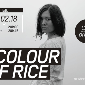Colour Of Rice