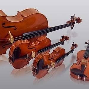 Hudson Valley Strings