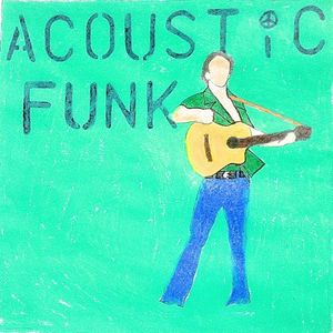 Will Hauptle's Acoustic Funk