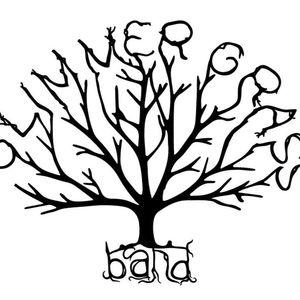 Glimmer Grass Band