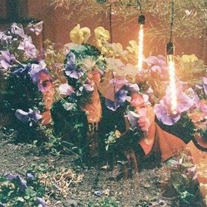 Flores Plásticas