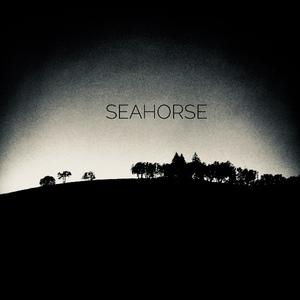 Seahorse (US)