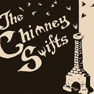 The Chimney Swifts