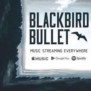 Blackbird Bullet