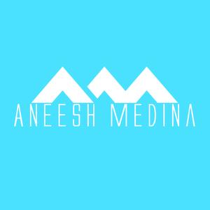 DJ Aneesh