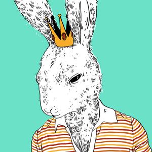 Charlie Boy The Rabbit King