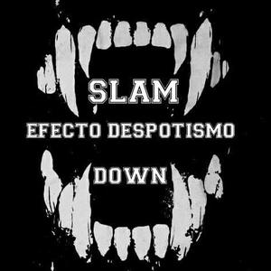Efecto Despotismo