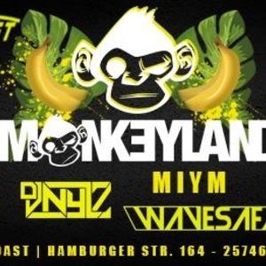 DJ Nylz
