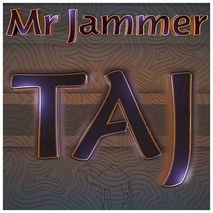 Mr Jammer