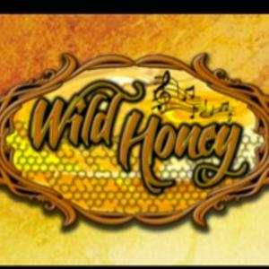 The Wild Honey Band
