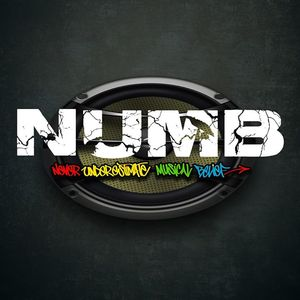 Never Underestimate Musical Belief (N.U.M.B) OFFICIAL PAGE