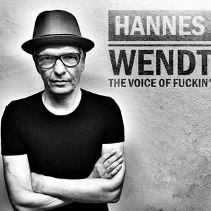 Hannes Wendt Band