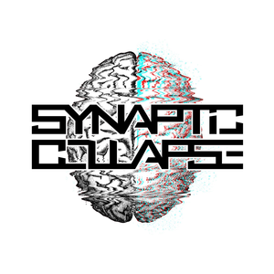 Synaptic Collapse