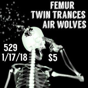 Air Wolves