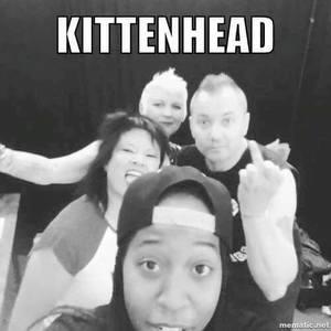 Kittenhead