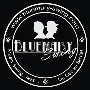 Bluemary swing
