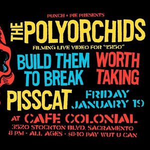 The Polyorchids