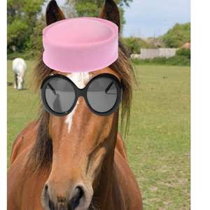 Jockey Onassis