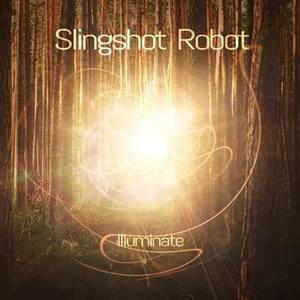 Slingshot Robot