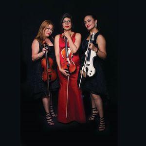 La Vid Violin