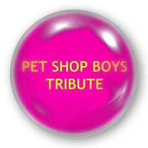 Petshopboys Tribute