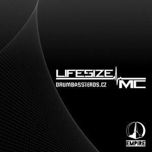 Lifesize MC