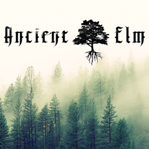 Ancient Elm