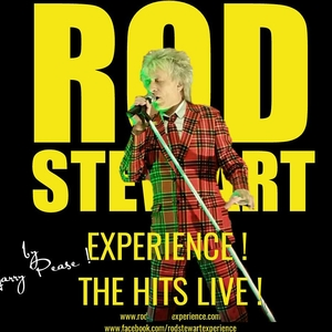 The Rod Stewart Experience