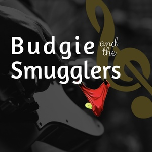 Budgie and the Smugglers