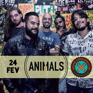 Banda Animals