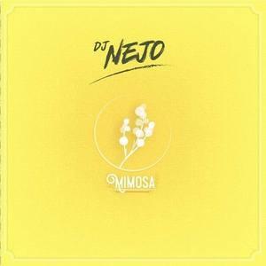DJ Nejo