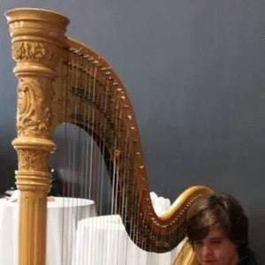 John McColley, Harpist