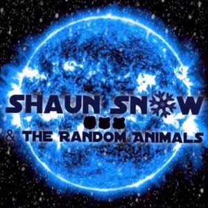 Shaun Snow & The Random Animals