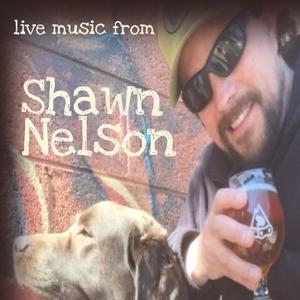 Shawn Nelson Music