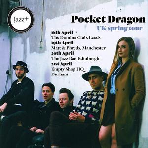 Pocket Dragon