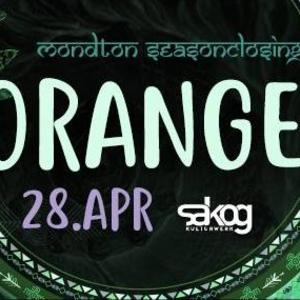 Orange Vibes
