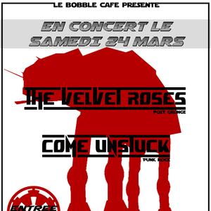 The Velvet Roses