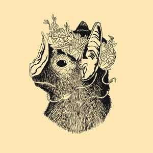 Palomino Witchcraft