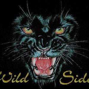 Wild Side Rocks