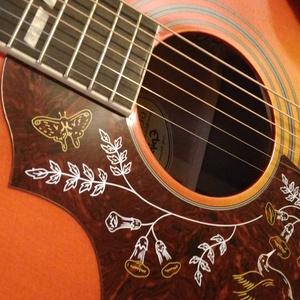 Jeremy Harrison Acoustic